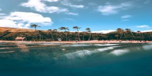 EXPIRED: Flights to Honolulu, USA from $679 return flying Hawaiian Airlines (SYD/BNE)