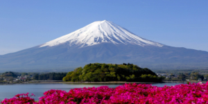 Flights to Tokyo, Japan from $305 return – Save $90!