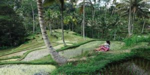 Flights to Bali from $499 return flying Virgin Australia – Save $60 with bags & meals inc!