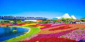 Flights to Orlando, USA from $942 return flying United Airlines/Air Canada – Save $350!