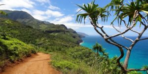 Flights to Hawaii, USA from $383 return (SYD/MEL) – Save $70!