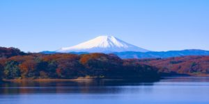 Tokyo from $512 return flying Qantas – Save over $190!